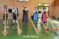 Stella Alpina - Alphorngruppe der Amerdinger Parforcehornbläser